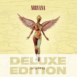 Nirvana - In Utero: 20th Anniversary Deluxe Edition - CD
