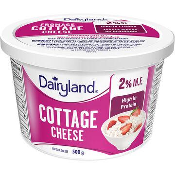 Dairyland 2% Cottage Cheese - 500g