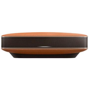 Pioneer Executive Bluetooth Speaker - Brown - XWLF3T