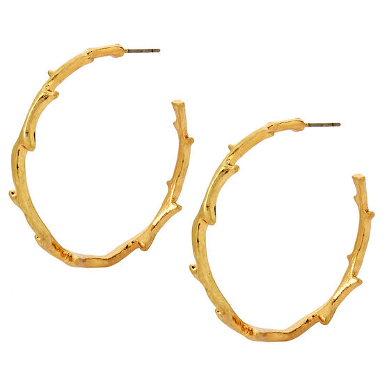 Haskell Hoop Earrings - Gold