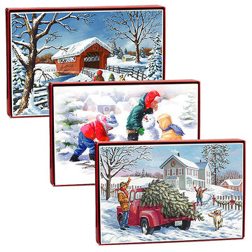 American Greetings Christmas Cards - Snow Fun - 14 count - Assorted