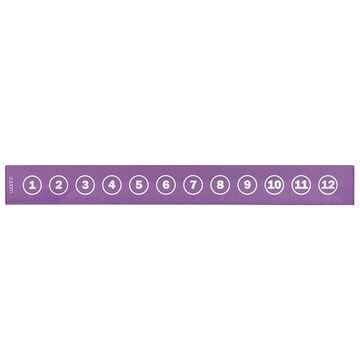 Want Ruler - Purple - 13 inches