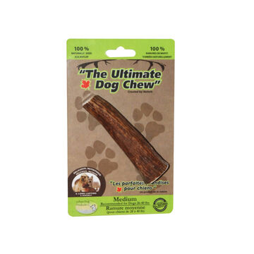 Elk Antler Chew Split Chew Bone - Medium