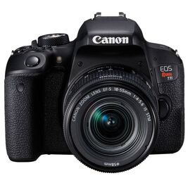 Canon Rebel T7i with 18-55mm IS STM Lens - Black - 1894C002