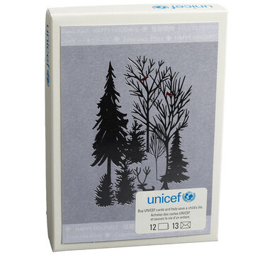 Unicef Christmas Cards - Winter Scenes - 12 pack