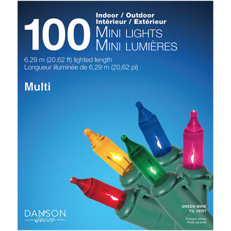 Danson Outdoor Mini Light Set - 100s - Multicolour - X77048MOD