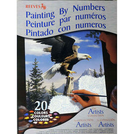 Reeves Paint by Numbers - Eagle