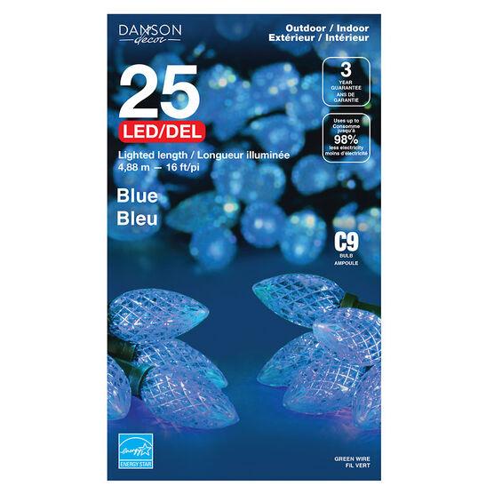 Danson Outdoor LED Light Set - 25s - Blue - X77304