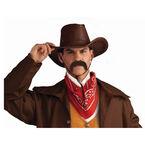 Halloween Pancho Moustache