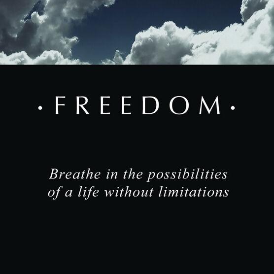 PANDORA ESSENCE Freedom Charm