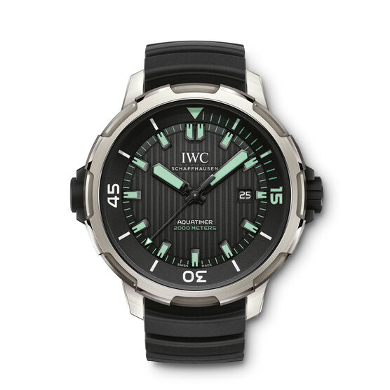 IWC Aquatimer Automatic 2000 Watch in Titanium