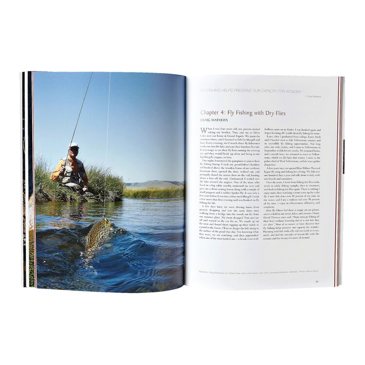 Simple Fly Fishing: Techniques for Tenkara and Rod & Reel (Patagonia® paperback),