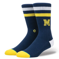 MICHIGAN WOLVERINES LOGO | BLUE | L