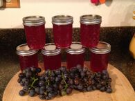 Grape Jelly - Ball® Auto Canner Recipes