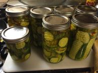 Bread and Butter Pickles - Ball® Recipes