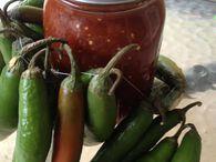 Roasted Tomato-Chipotle Salsa | Chipotle Salsa Recipe - Ball® Recipes