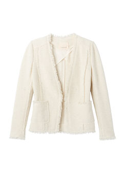Sparkle Stretch Blazer