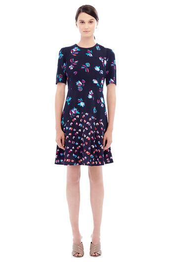 Long Sleeve Print Mix Dress