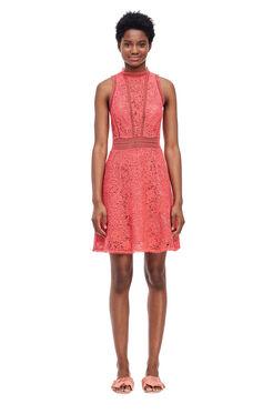 Arella Lace Dress - Ladybug
