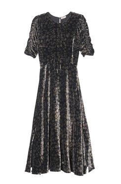 Velvet Liane Floral Midi Dress