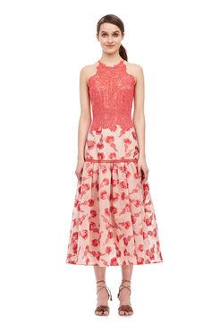 Floral Jacquard Midi Dress - Nude/Zinnia