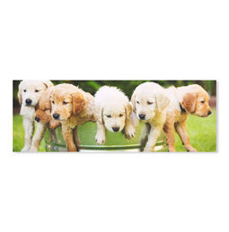 Puppy Party 1000-Piece Cardboard Jigsaw Puzzle