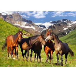 Mountain Horses 500-Piece Cardboard Jigsaw Puzzle