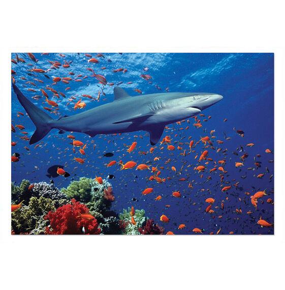 Shark Jigsaw Puzzle - 100 Pieces