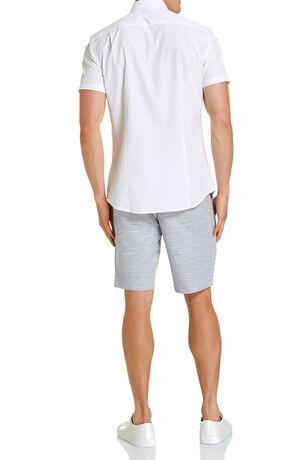 Davis Short Sleeve Stripe Shirt