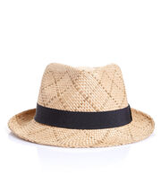 Isaac Seagrass Trilby