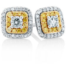 Stud Earrings with a 1/2 Carat TW of Yellow & White Diamonds in 10kt Yellow & White Gold
