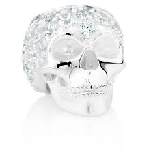 Online Exclusive - Wild Hearts Skull Charm with Cubic Zirconia in Sterling Silver