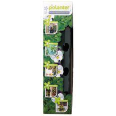 Polanter Dark Green