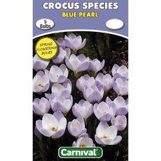 Carnival Crocus Bulb Blue Pearl 5 Pack