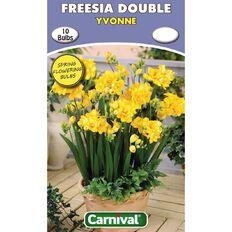 Carnival Freesia Double Bulb Yvonne 10 Pack