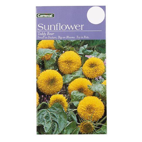 Carnival Teddy Bear Sunflower Flower Seeds