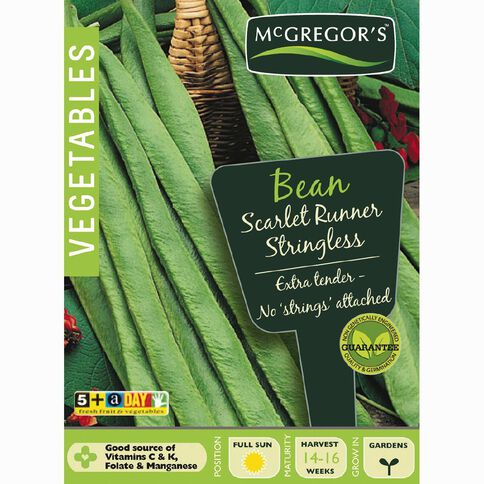 McGregor's Scarlet Runner Stringless Bean Vegetable Seeds