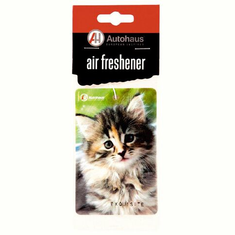 Autohaus Cardboard Hanger Pets - Kitten OR Puppy