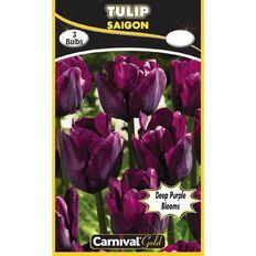 Carnival Gold Tulip Bulb Saigon 3 Pack