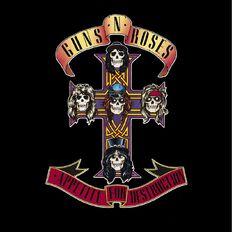 Appetite for Destruction Vinyl by Guns N Roses 1Record