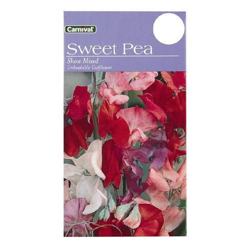 Carnival Seeds Sweet Pea Flower