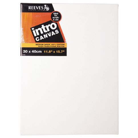 Reeves /Jasart Intro Canvas 11.8 x 15.7inch