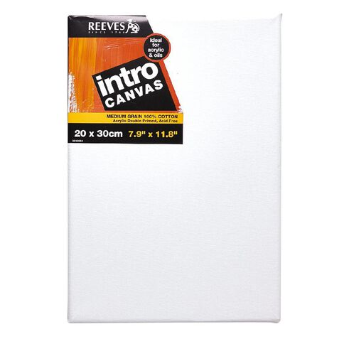 Reeves Intro Canvas 7.9 x 11.8inch