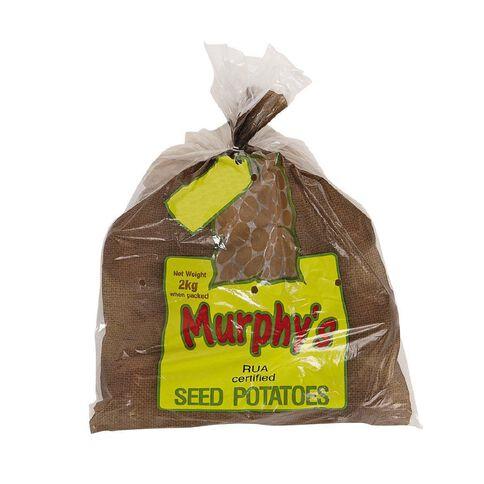 Murphy's Seed Potato Rua 2kg Bag