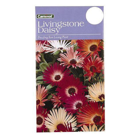 Carnival Seeds Livingstone Daisy Flower