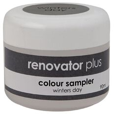 Renovator Plus Test Pot Winters Day 90ml