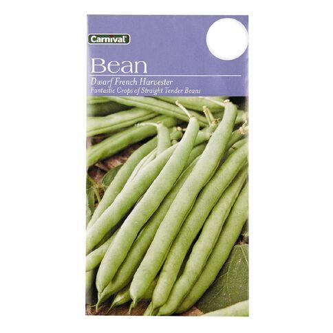 Carnival Dwarf Bean Vegetable Seeds