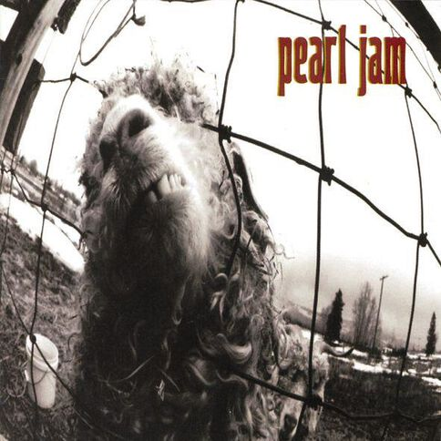 Vs CD by Pearl Jam 1Disc