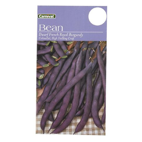 Carnival Seeds Beans Dwarf French Royal Burgundy