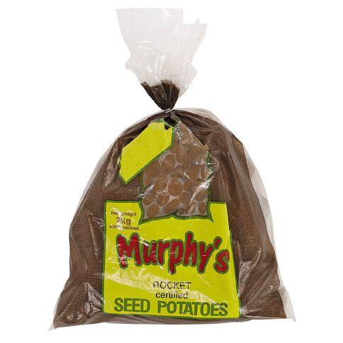 Murphy's Seed Potato Rocket 2kg Bag
